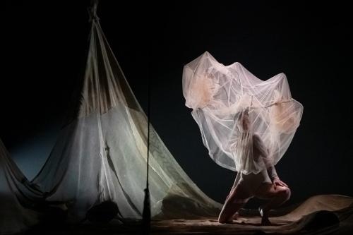 """MM CDC - Michele Merola Contemporary Dance Company - """"Pastorale"""""""